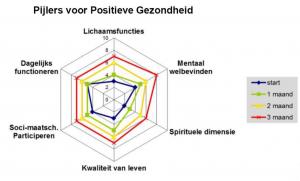 Machteld Huber, Pijlers Positieve Gezondheid